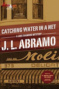 Catching Water in a Net by J.L. Abramo