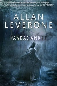 Paskagankee by Allan Leverone