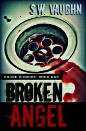 Broken Angel by S. W. Vaughn