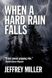 When A Hard Rain Falls by Jeffrey Miller