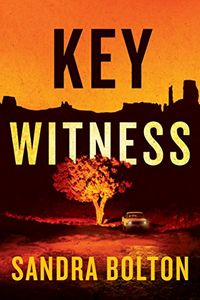Key Witness by Sandra Bolton