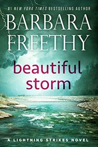 Beautiful Storm by Barbara Freethy