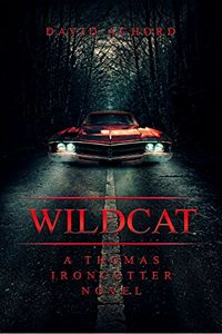 Wildcat by David Achord