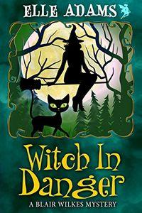 Witch in Danger by Elle Adams