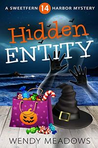 Hidden Entity by Wendy Meadows