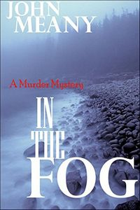In the Fog by John Meany