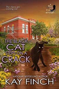 The Black Cat Steps on a Crack by Kay Finch
