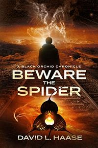 Beware the Spider by David L. Haase