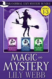 Magic and Mystery Bundle by Lily Webb