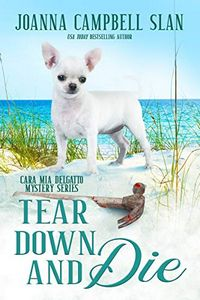 Tear Down and Die by Joanna Campbell Slan